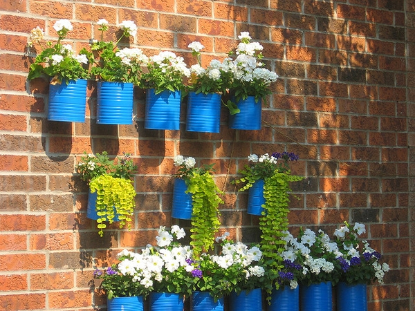 blue tin can garden