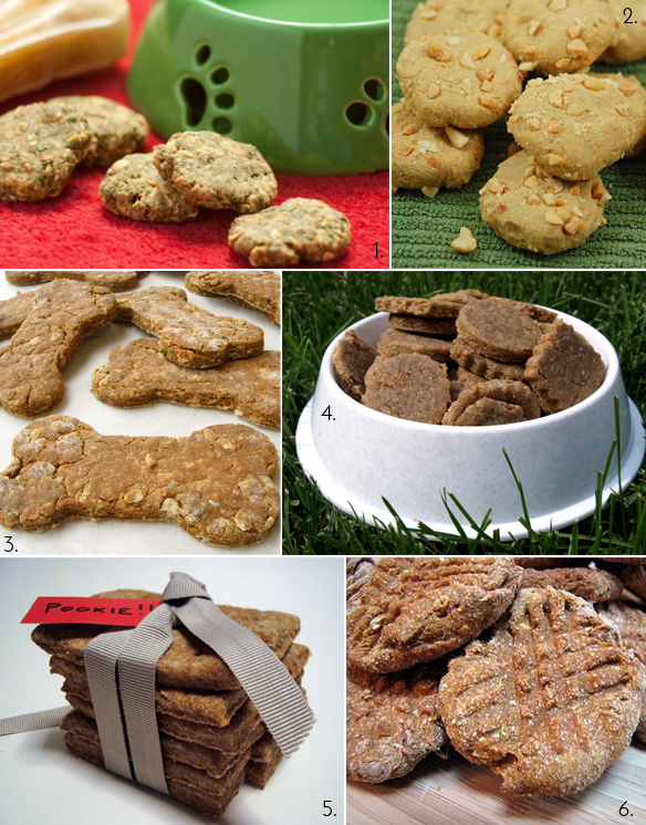 dog treat round up