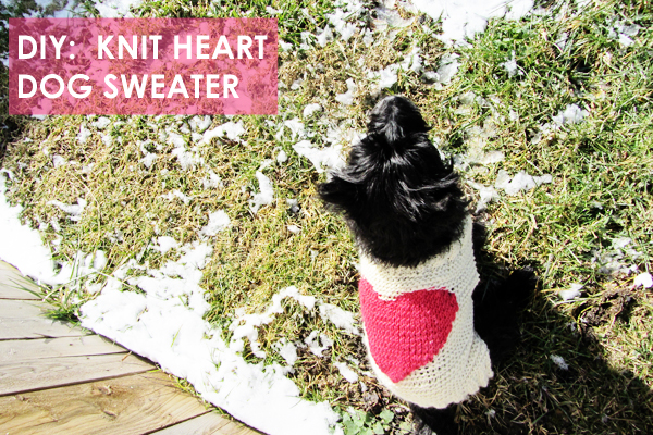 knit valentine dog sweater :: stuff steph does